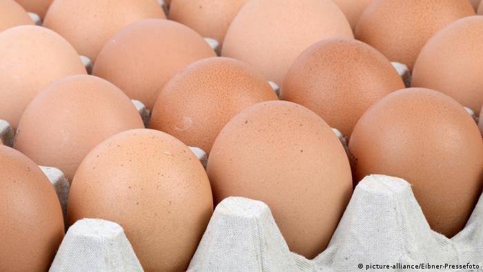 Hühnereier in einer Palette (picture-alliance/Eibner-Pressefoto)