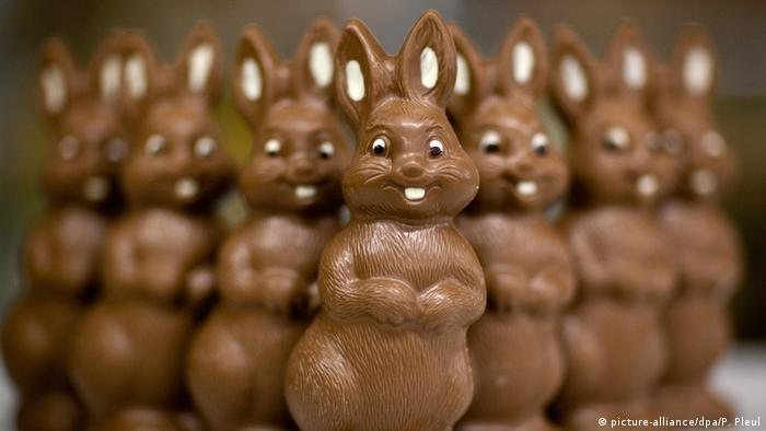 Chocolate easter bunnies in a row