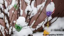 Schnee in Mecklenburg-Vorpommern