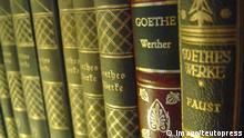 Buchrücken Goethe Faust