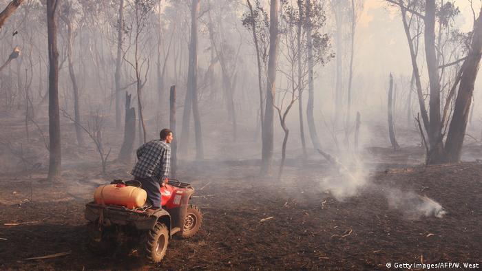 A man on a quad inspects a still smoking forest after a bushfire burned much of it down.