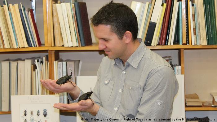 Entomologist Patrice Bouchard holding two beetles