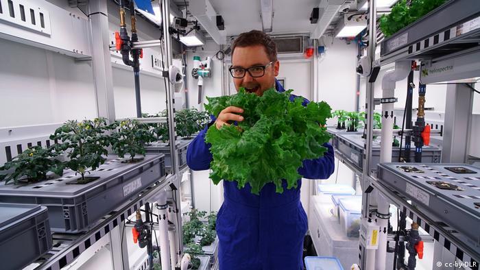 Пауль Цабель с первым урожаем антарктического огорода