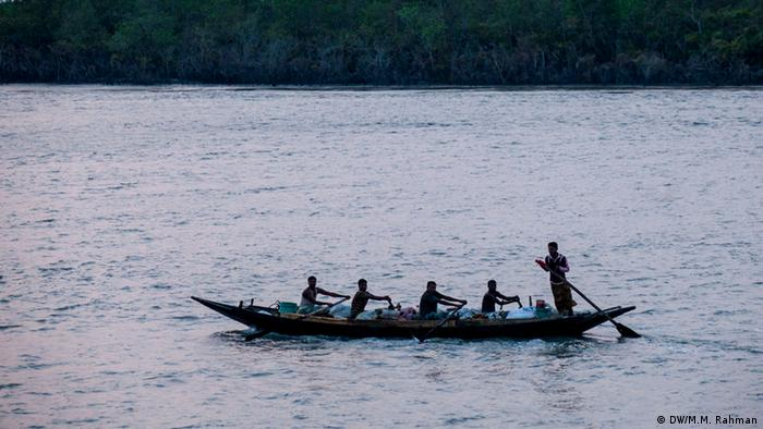 Sundarbans Honey Collection Bildergalerie (DW/M.M. Rahman)
