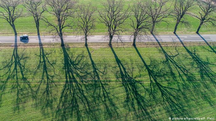 Arial shot of a car driving along a tree-lined road