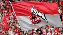 Fußball 1. FC Köln Wappen