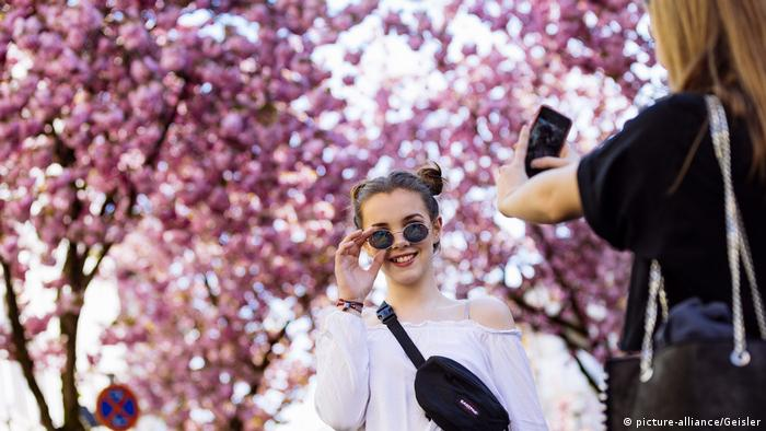 People take photos in front of the cherry blossoms in Bonn