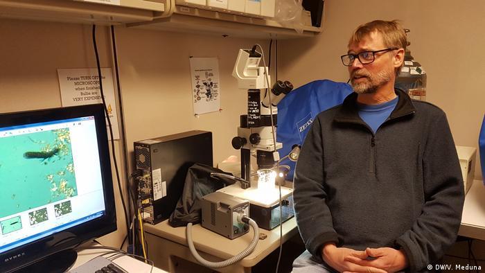 Ecologista polar Ian Hogg vasculhou Antártida à procura de um tipo raro de artrópode
