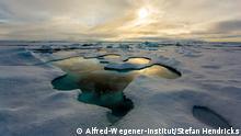 Schmelztuempel auf arktischem Meereis; Melt pond on Arctic sea ice.