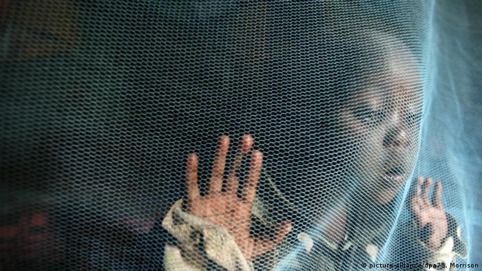 Ein Moskito-Netz bietet Schutz gegen die Anopheles-Mücke (Foto: picture-alliance/dpa7S. Morrison)