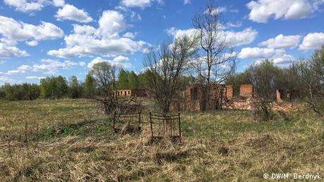 Коні Пржевальського та інші мешканці Чорнобиля: заповідник у зоні відчуження (відео)