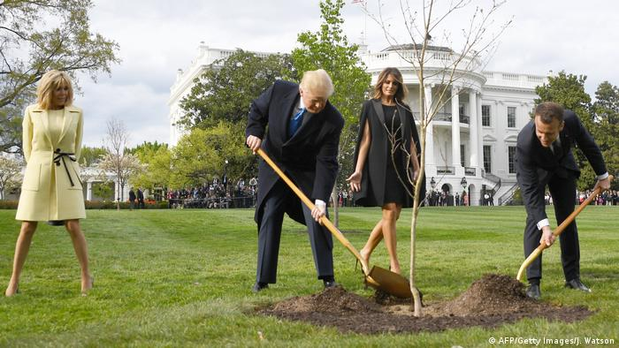 Macron and Trump plant a tree as their wives Brigitte and Melania watch on the White House lawn