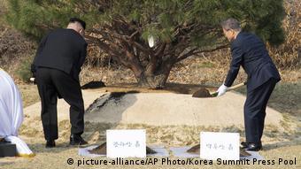 Kim Jong Un und Moon Jae-in pflanzen Baum