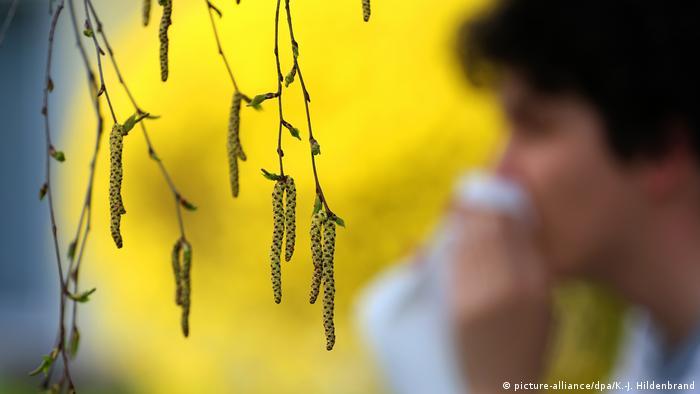 Flores com pólen e pessoa com lenço no nariz