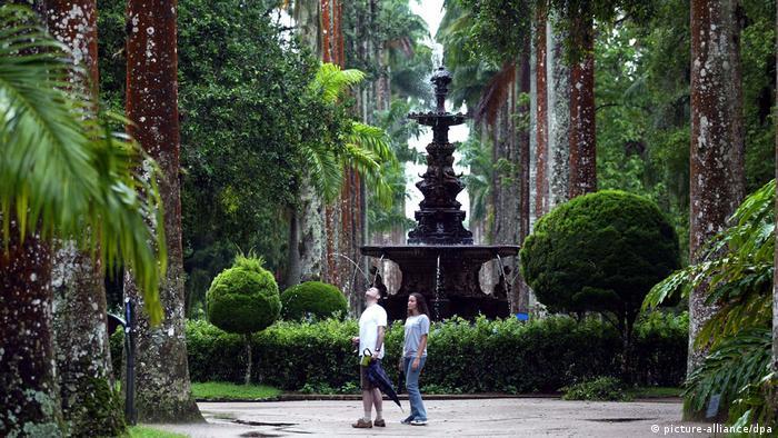 Brasilien: Botanischer Garten in Rio de Janeiro (picture-alliance/dpa)