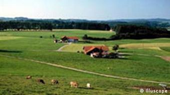 Farm in the Allgäu region of Bavaria
