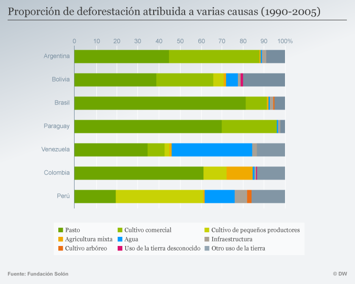 Infografik Entwaldung Südamerika SPA