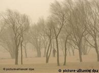 中国沙漠化严重