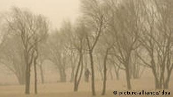 A file photo showing a villager walking amid trees in the Xinglong village suffering from a sandstorm, near the city of Zhangjiakou city, northern China's Hebei province, 21 April 2006. More and more sand dunes move to cover buildings, vegetation and areas in western China, threatening the human living environment. The world marks the 38th World Earth Day 22 April 2007 under the motto: 'Treat the earth kindly --Start from saving resources.' EPA/WU HONG +++(c) dpa - Report+++