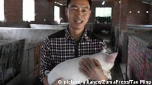 China Schweinezucht (picture-alliance/ZumaPress/Tao Ming)