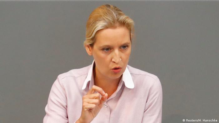 Fiscalía alemana investigará a líder de AfD por donaciones | Europa al día | DW | 14.11.2018