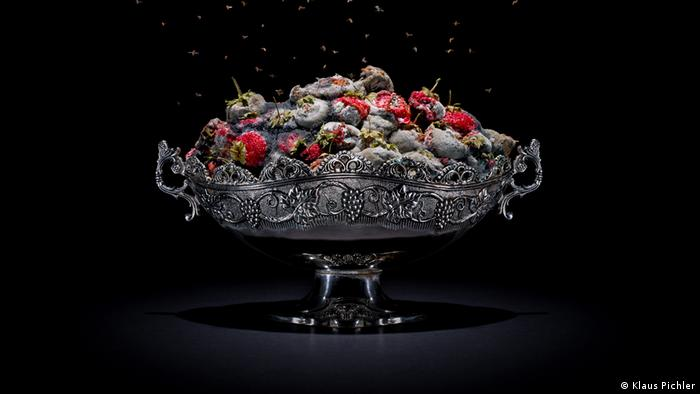 Klaus Pichler, rotting strawberries (Klaus Pichler)