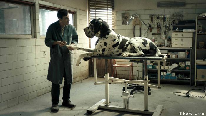 Dogman filmstill