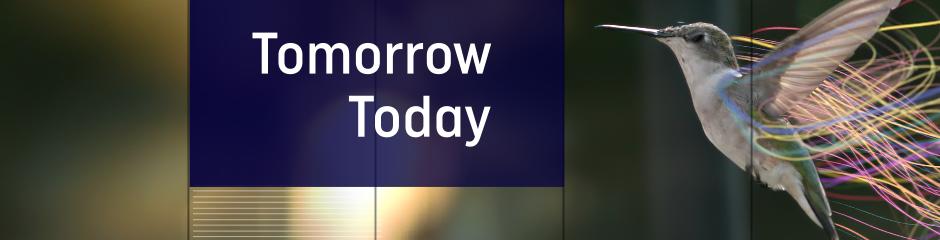 DW Projekt Zukunft Themenheader Englisch (Tomorrow Today)