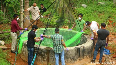Bildergalerie Nipah-Virus (Getty Images/AFP)