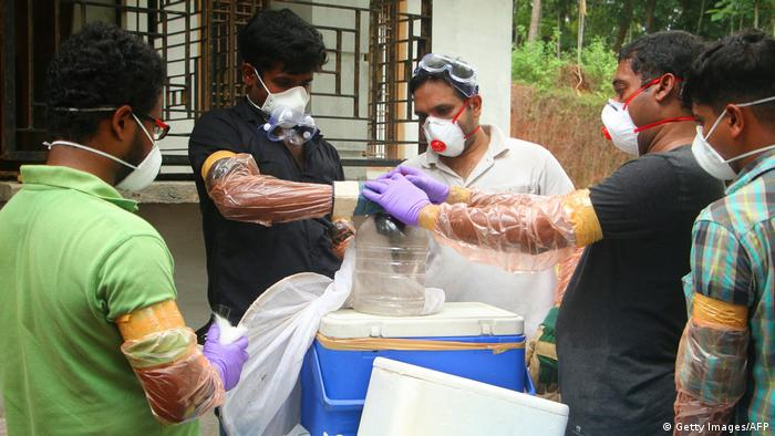 Scientists test bat for virus in India