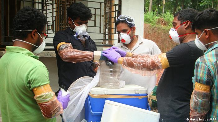 Scientists test bat for virus in India