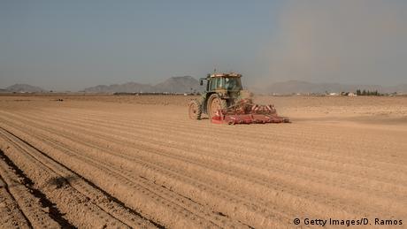 Spanien Los Alcazares - Landwirtschaft nah des Mar Menor
