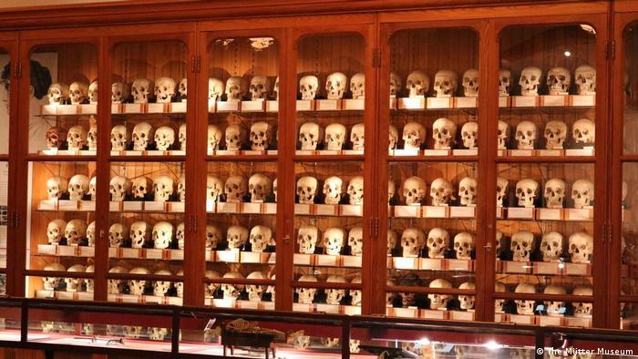 Музей медицинской истории Мюттера в США