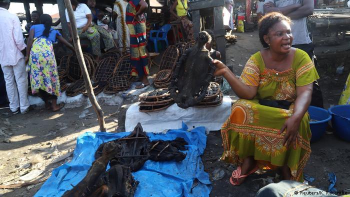 Carne de caça é vendida num mercado de Mbandaka, na RDC