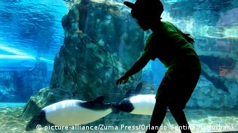 USA Themenparks | Sea World (picture-alliance/Zuma Press/Orlando Sentinel/J. Burbank)