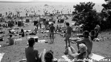 FKK/Nackt Kultur -Dutzende Nudisten sonnen sich am Müggelsee in Ostberlin