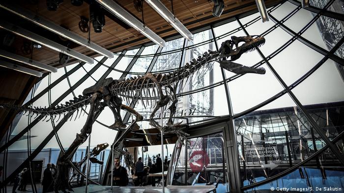 Frankreich Dino Versteigerung am Eiffelturm