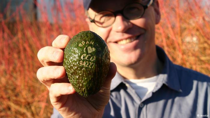 Natural branding on an avocado