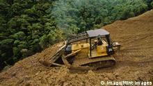 Bulldozer works on logging road in tropical rainforest, Sabah, Borneo PUBLICATIONxINxGERxSUIxAUTxHUNxONLY Bulldozers Works ON logging Road in Tropical RAINFOREST Sabah Borneo PUBLICATIONxINxGERxSUIxAUTxHUNxONLY