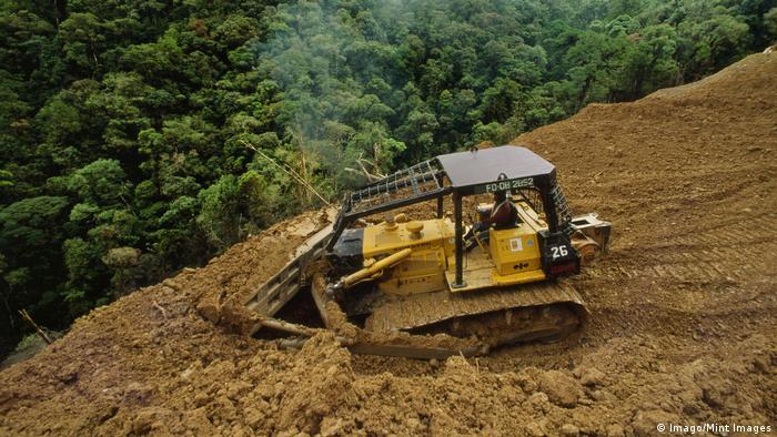 Buldoser beraksi di hutan hujan di Kalimantan, Indonesia
