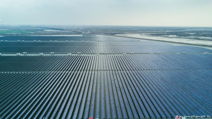 Globale Entwicklung von Erneuerbaren Energien: China, Zhejiang: Solarfeld (picture-alliance/X. Yu)