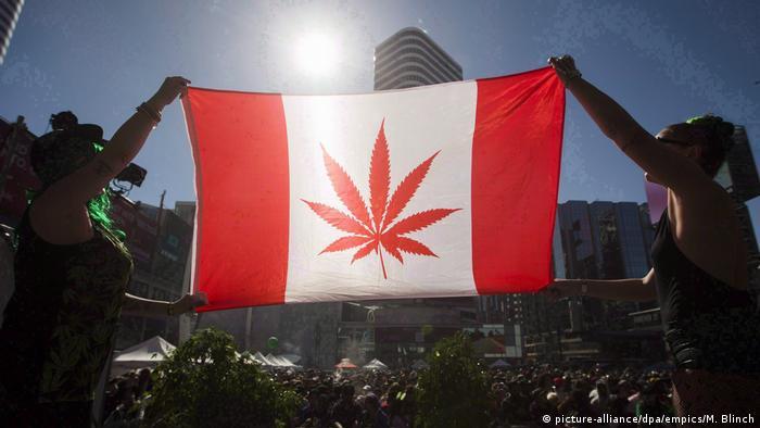 Нижня палата канадського парламенту легалізувала марихуану