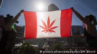 Στον Καναδά το ενδιαφέρον ατόνησε και γύρω στο 28% των χρηστών προμηθεύεται «χόρτο» από τη μαύρη αγορά