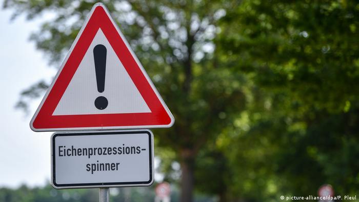 Осторожно, дубовый шелкопряд - предупреждающий знак в бранденбургском регионе Шпревальд