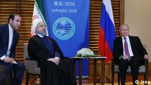 Shanghai Cooperation Organisation Putin und Rohani in China