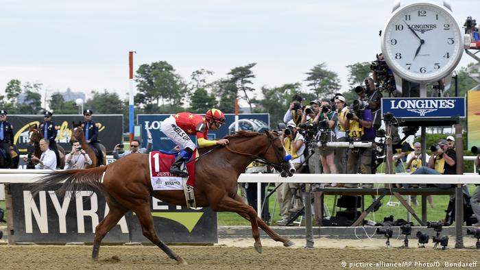 Belmont Park Pferderennen Justify (picture-alliance/AP Photo/D. Bondareff)