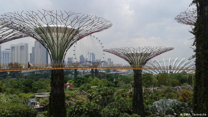 Singapore: Gardens by the bay (DW/A. Termèche)