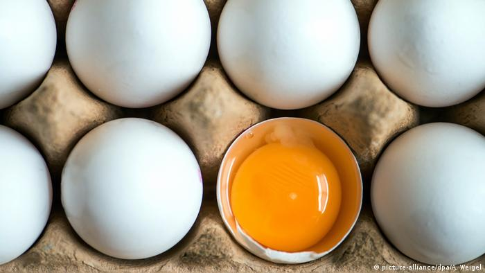 A broken egg alongside other whole eggs (picture-alliance/dpa/A. Weigel)