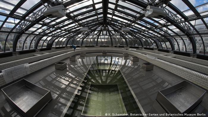 Victoriahaus Im Botanischen Garten Berlin Offnet Wieder Nach