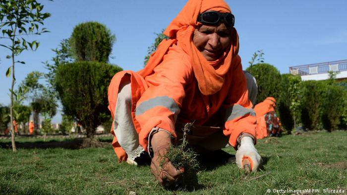 Afghanistan Frauen arbeiten in der Gartenpflege (Getty Images/AFP/N. Shirzada)
